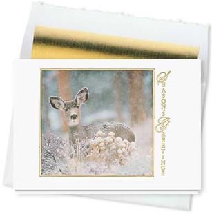 Design #516CW - Winter Wonder Seasons Greeting Card