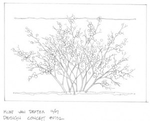 Concept sketch of design #864CX, Red Berry Greetings Holiday Card