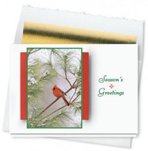 Design 735CS - The Northern Cardinal Holiday Card