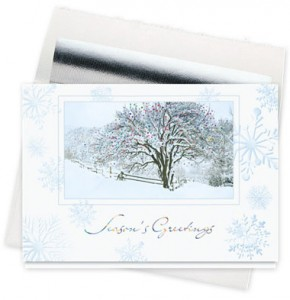 Design 731CS - Snow-Covered Tree Holiday Card