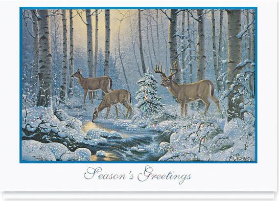 Natures Wonder Holiday Card