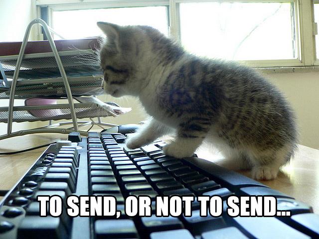 Cat_keyboard