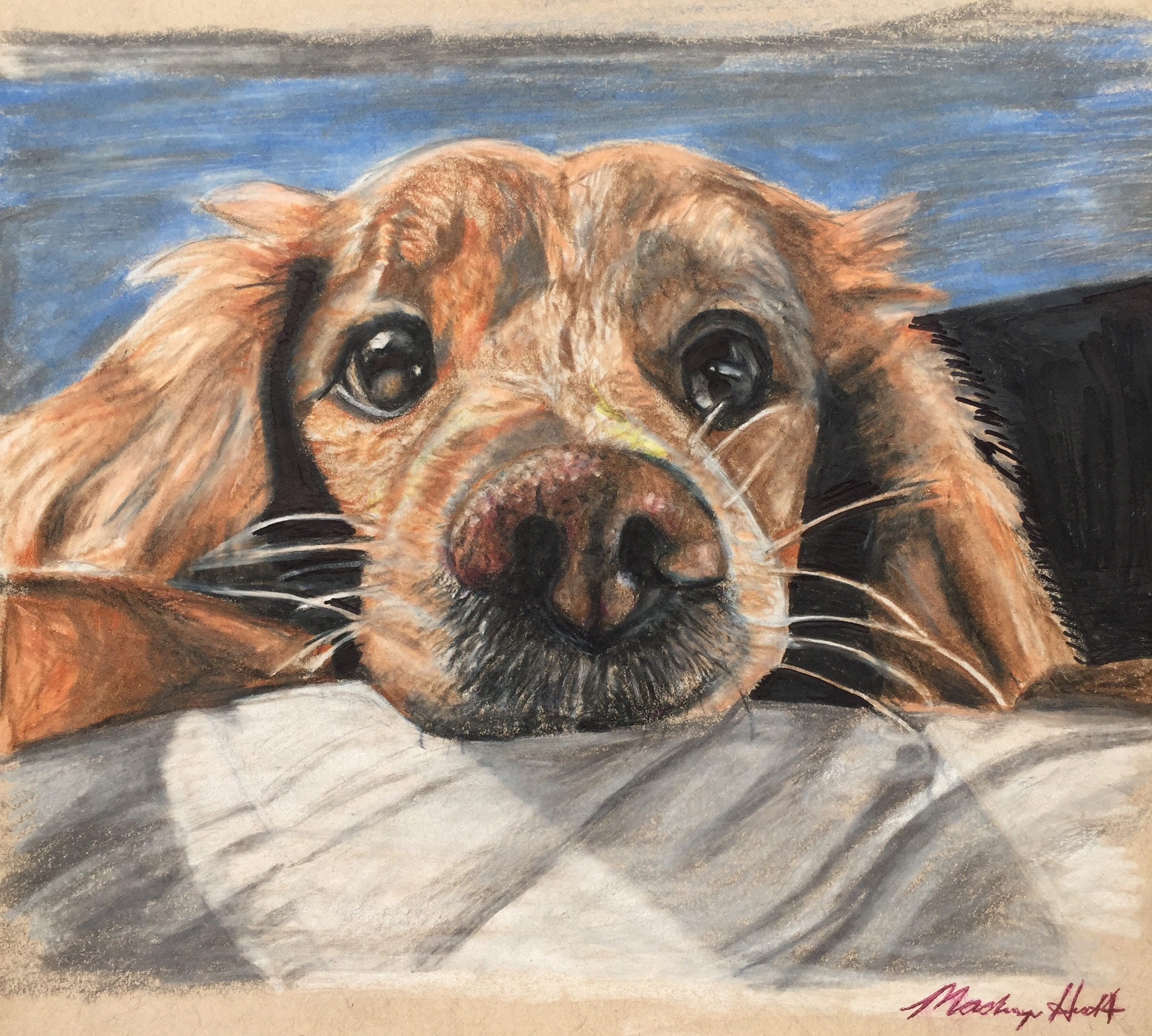 10th annual create a greeting card scholarship contest round 2 entry 524 kristyandbryce Image collections